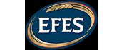 efes-brand-blur-logo-image-used-in-ernest24.com-site