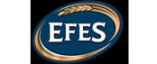 efes-brand-logo-image-used-in-ernest24.com-site